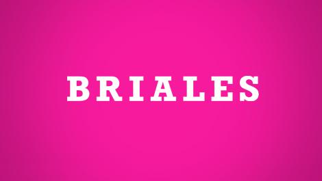 Briales | Diseño Web y desarrollo